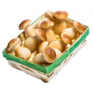 Košíček hub - marcipánová figurka - marcipán